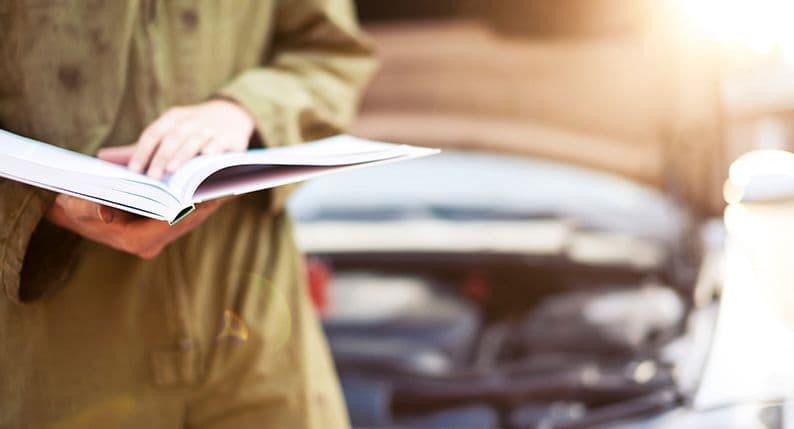 Phoenix car maintenance - your Owner's Manual